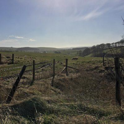Derbyshire 2017