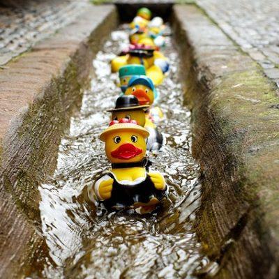 The Great Norwich Duck Race