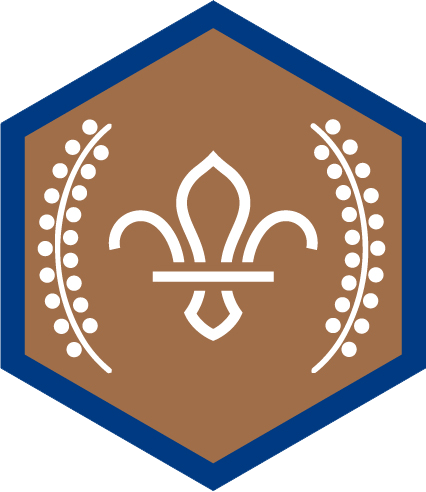 Top Awards / Norfolk Scouts / Providing fun, excitement and