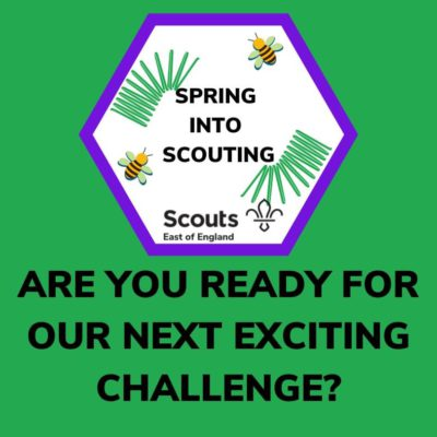 Spring into Scouting!